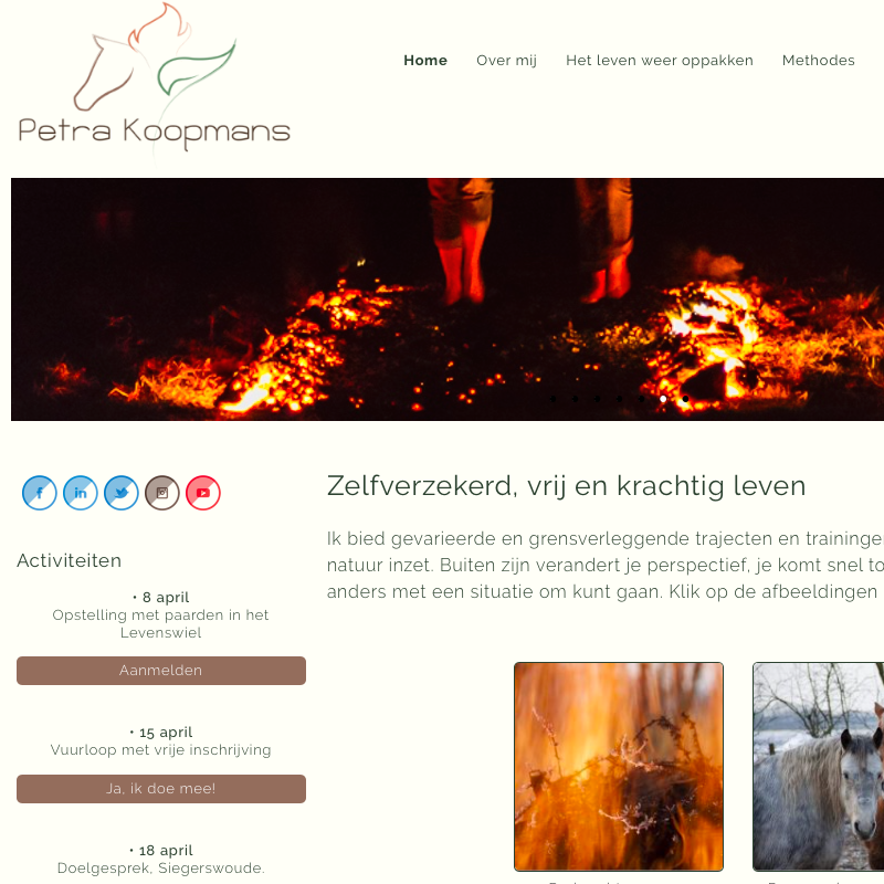 Screenshot van de website van Petra Koopmans.